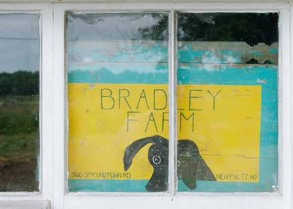 Ray Bradley Farm in New Paltz, NY